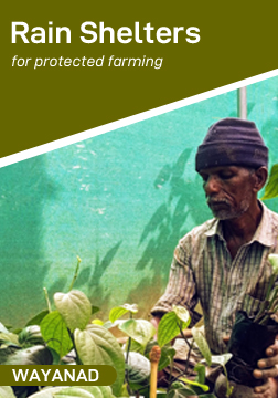Rain Shelters for Protected Farming of Vegetables